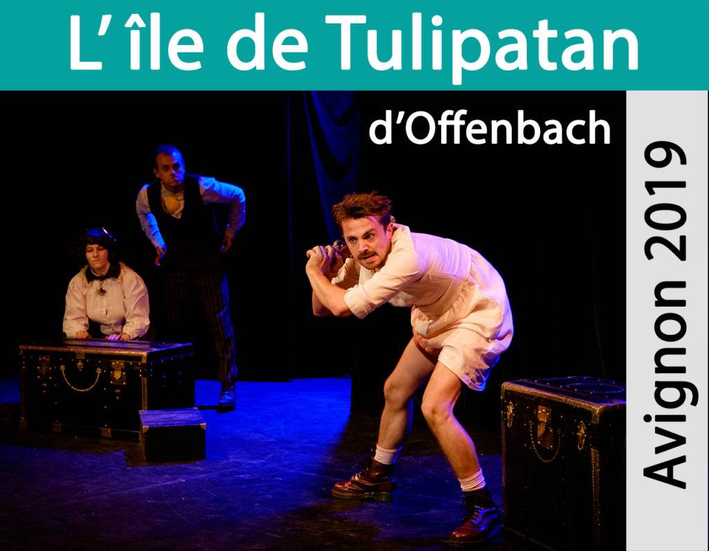 tulipatan19